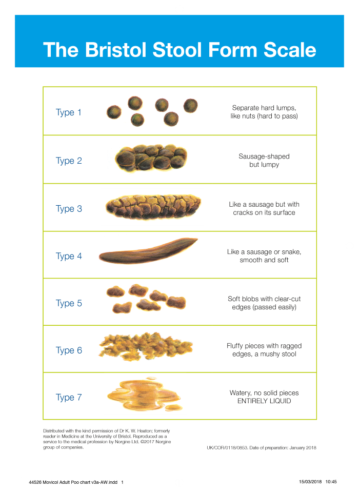 Bristol Stool Form Scale also referred to as Bristol Stool Chart